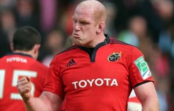 paul-o-connell-munster-irfu-contract